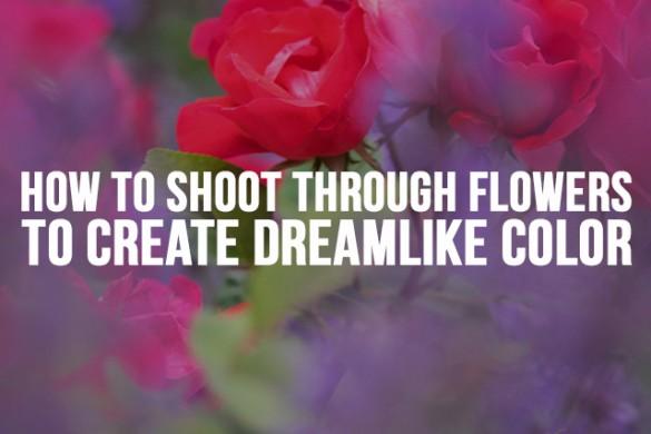 How to Shoot Through Flowers to Create Dreamlike Color