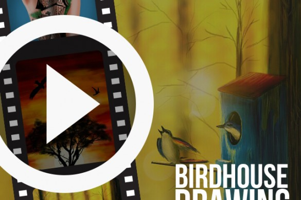 Users Share Time-lapse Videos of Birdhouse Drawings