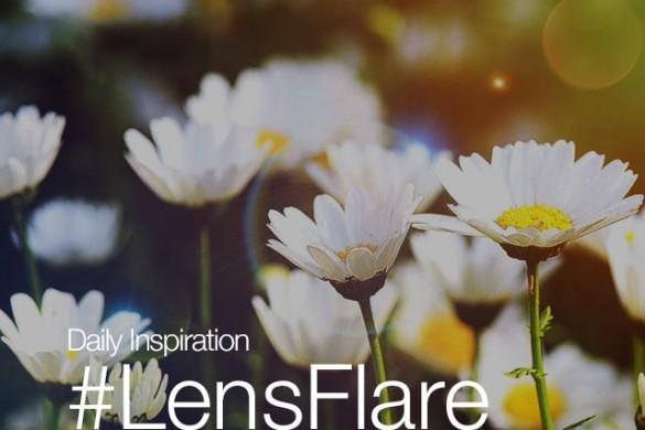 Thursday Inspiration: #LensFlare