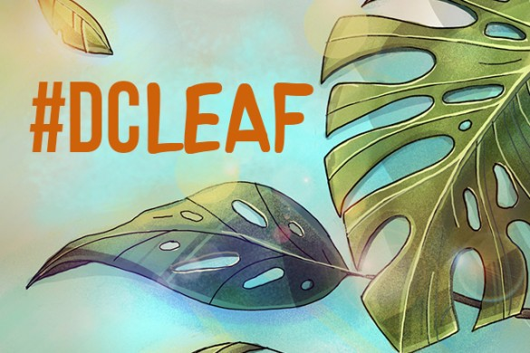 Embrace Nature's Simplicity, Draw a Leaf for this Week's Contest!