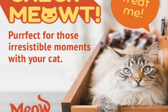 "New ""Check Meowt"" package by Meow Mix® brand helps make your irresistible moments with your cat purrfect!"