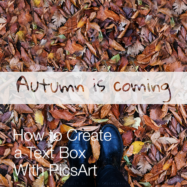 Autumn leaves photo with text box on it