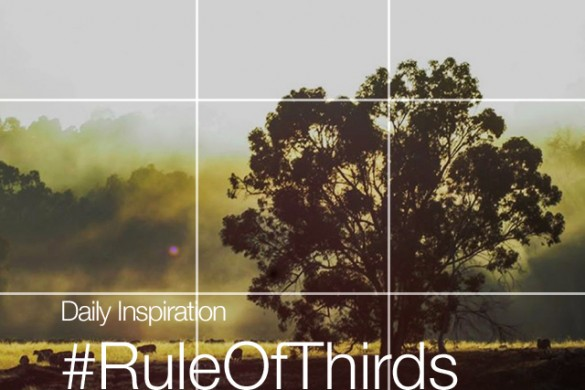 Monday Inspiration: #RuleOfThirds