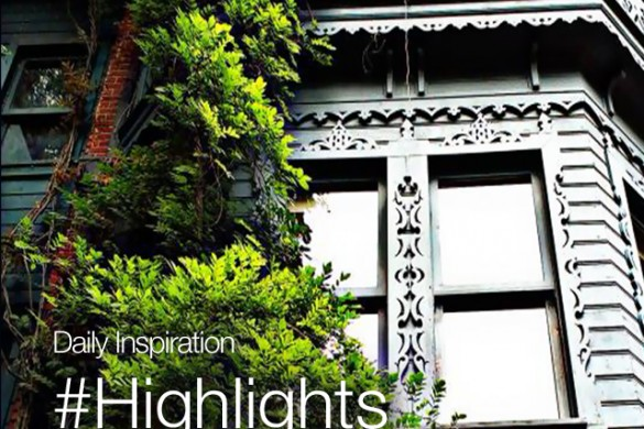 Saturday Inspiration: #Highlights