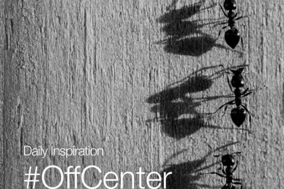 Monday Inspiration: #OffCenter