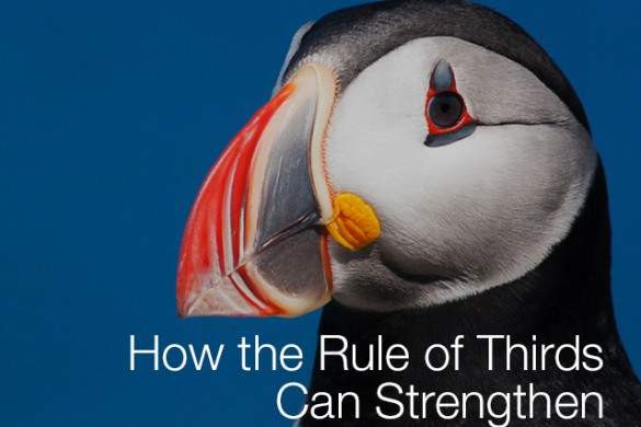 How the Rule of Thirds Can Strengthen Your Composition