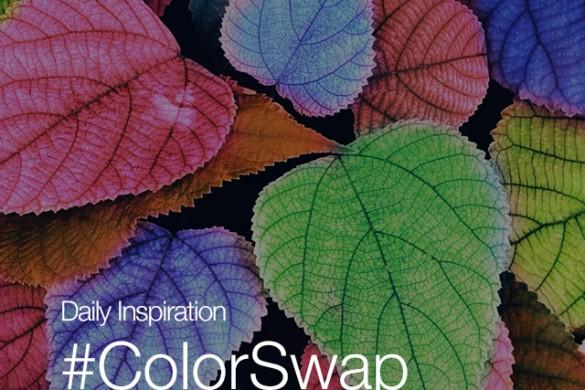 Friday Inspiration: #Colorswap