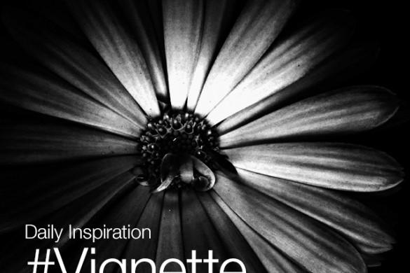 Thursday Inspiration: #Vignette