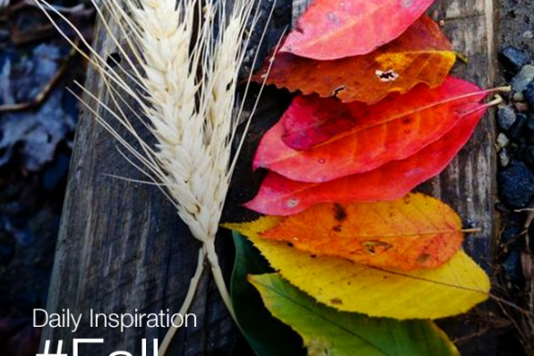 Tuesday Inspiration: #Fall