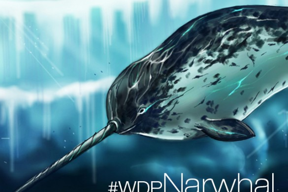 Weekly Drawing Project: Narwhal