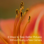 8 Ways to Take Better Pictures Without Buying a New Camera