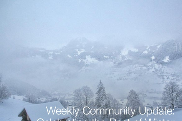Weekly Community Update: Celebrating the Best of Winter