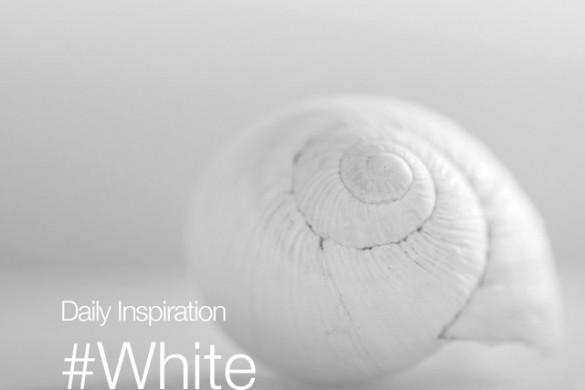 Saturday Inspiration: #White