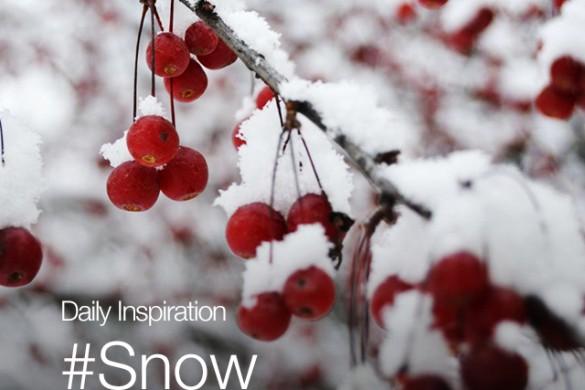 Saturday Inspiration: #Snow