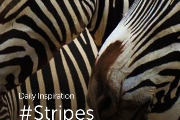 Monday Inspiration: #Stripes