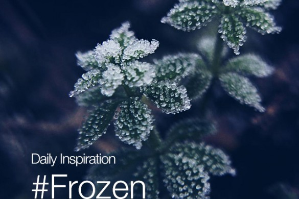 Thursday Inspiration: #Frozen