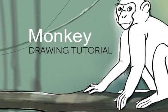 How to Draw a Monkey With PicsArt's Drawing Tools