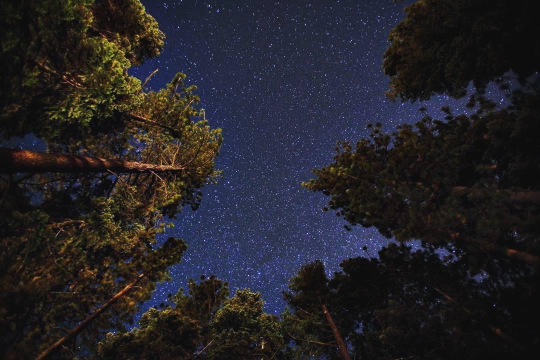 stargazing photos