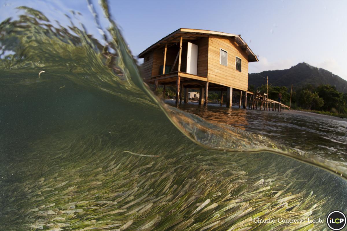 Stilt houses on Guanaja Island, Honduras - Conservation Photography - PicsArt Blog