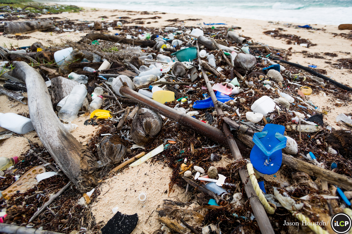 Plastic pollution at the Sian Ka'an Biosphere Reserve, Carribean Mexico - Conservation Photography - PicsArt Blog
