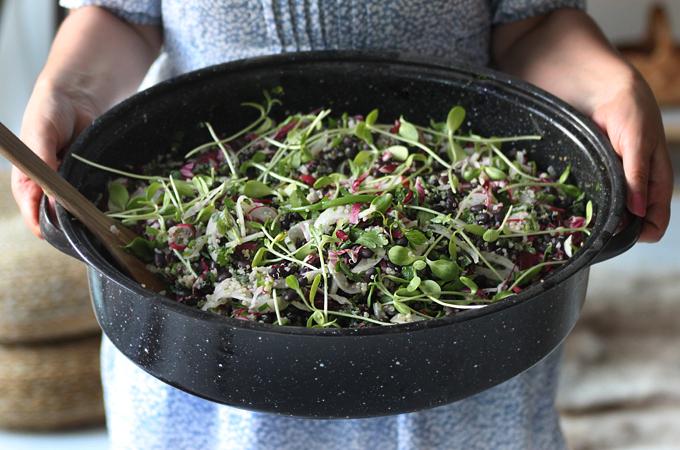 healthy salad food photography