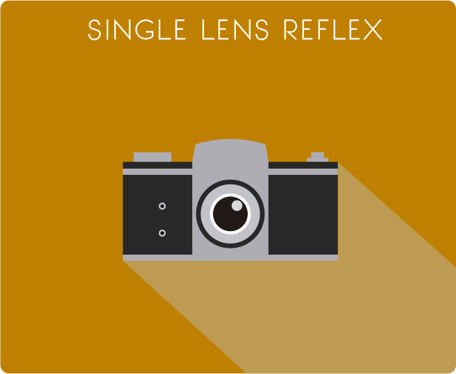 SLR (Single Lens Reflex) - History of the Camera - PicsArt Blog