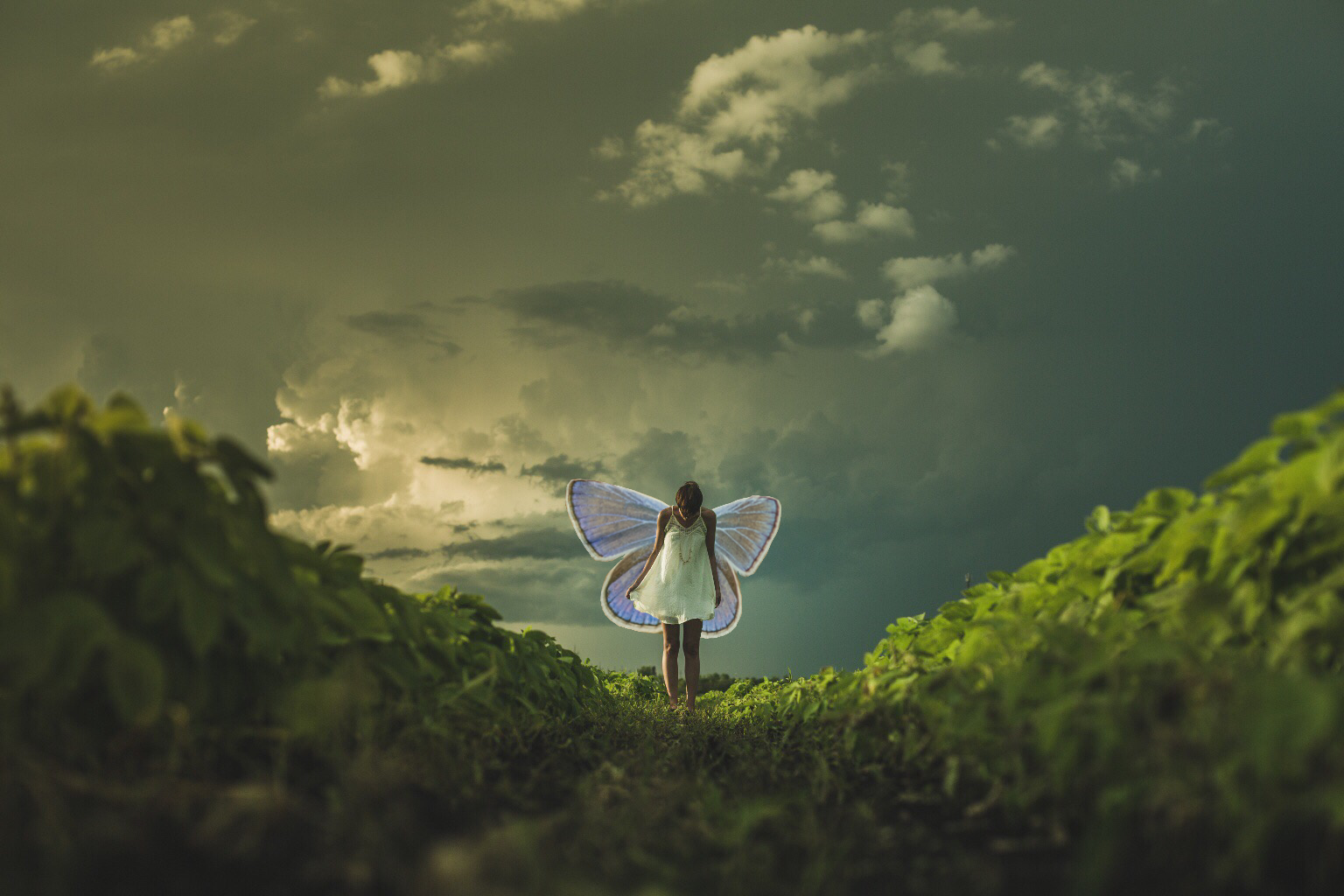 Spellbinding Editing Tricks for International Fairy Day