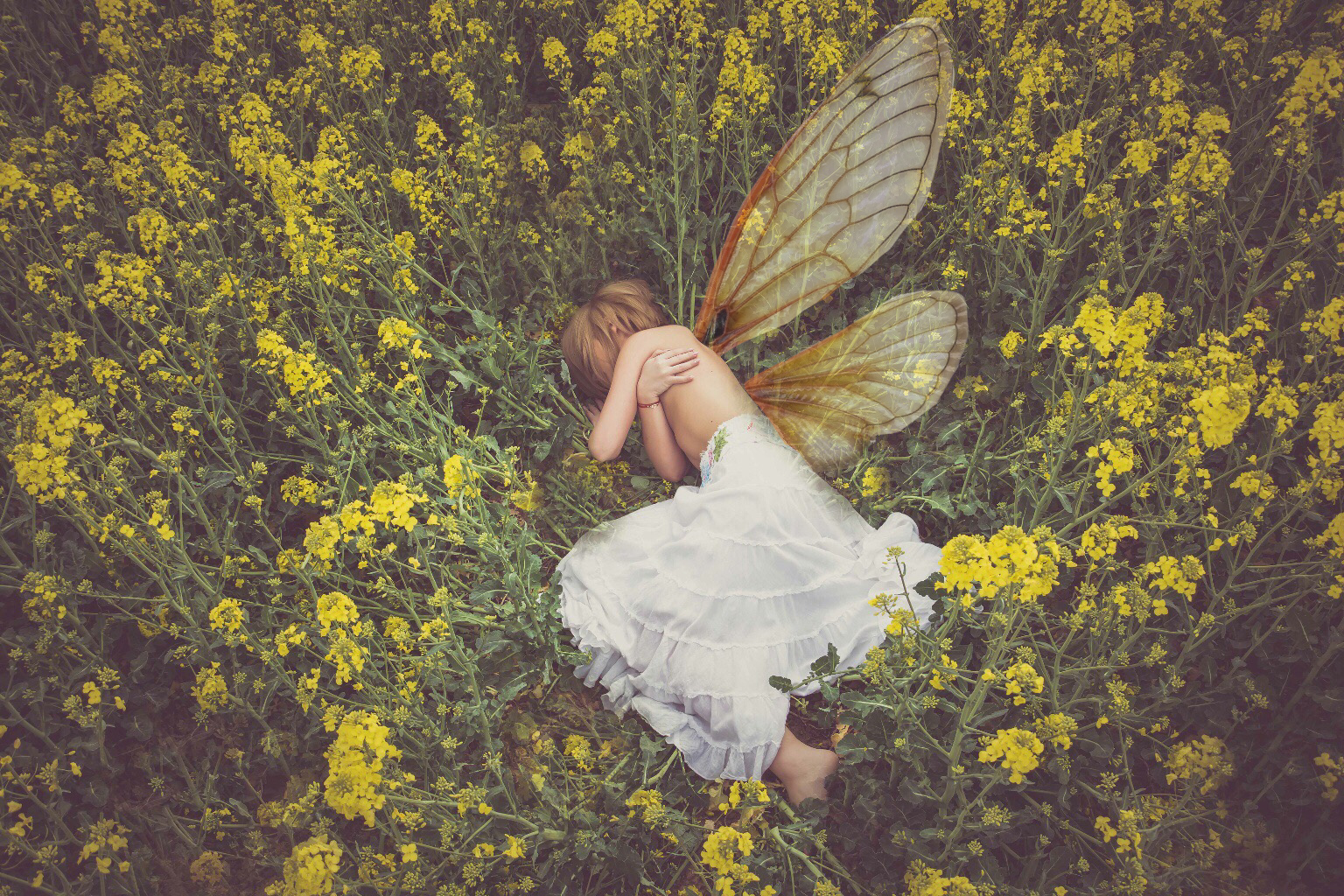 Fairy Girl Lying in Grass Field of Flowers