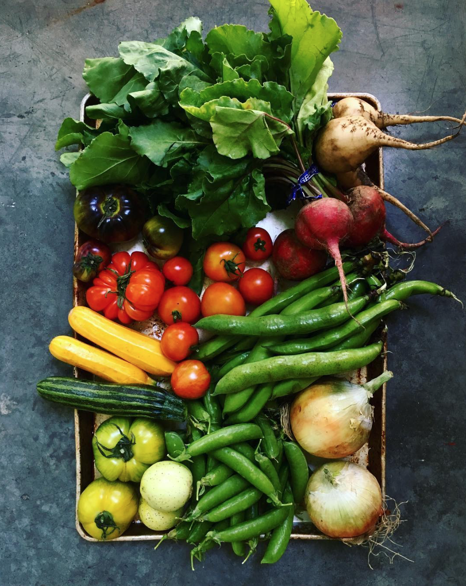 Fresh Vegetables Basket - Photo courtesy of Wrightkitchen