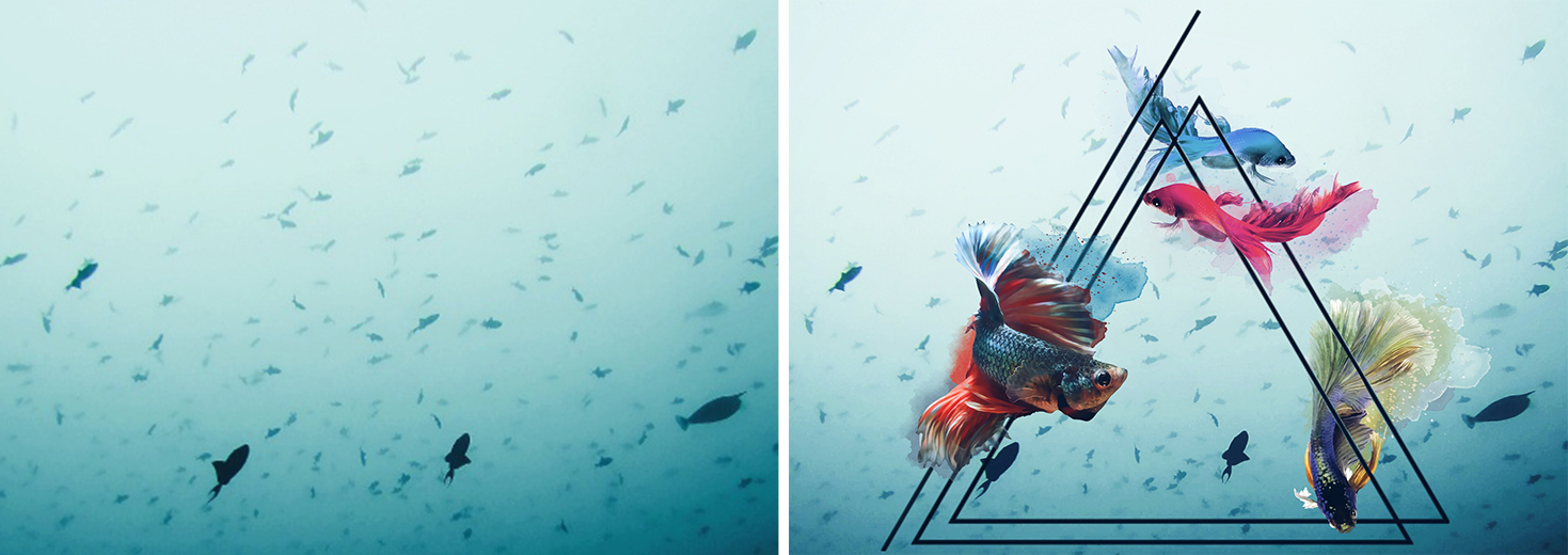 Triangle Clipart and Fish from the Underwater Package PicsArt Photo Editor
