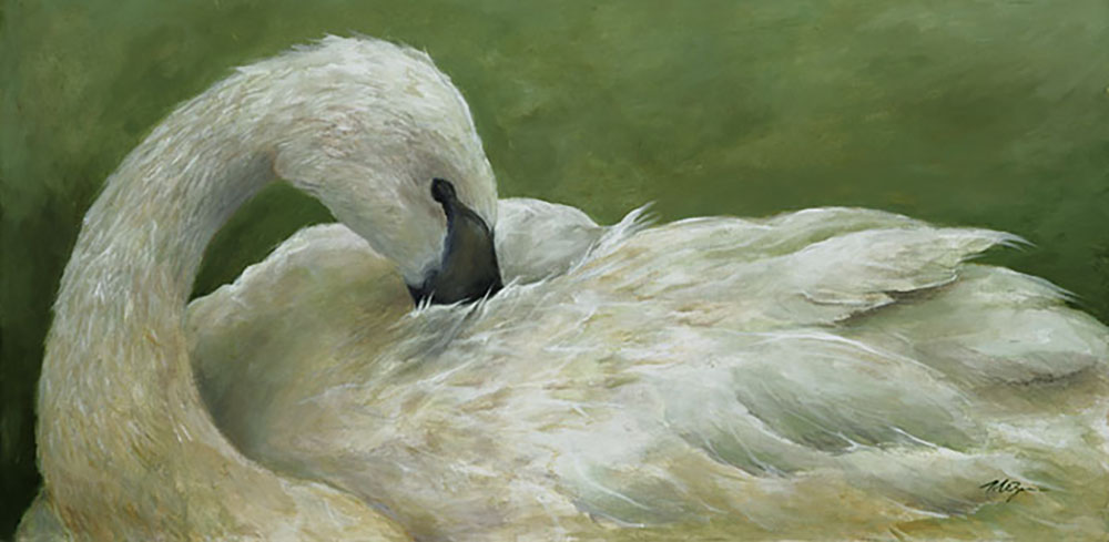 Full of Grace, swan painting by Mary Zins