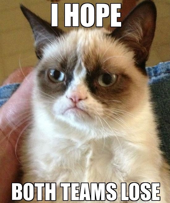 grumpy-cat-super-bowl-memes