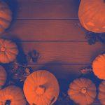 Pumpkins with PicsArt filters