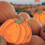 A PicsArt Minute: November In Review with pumpkin photo