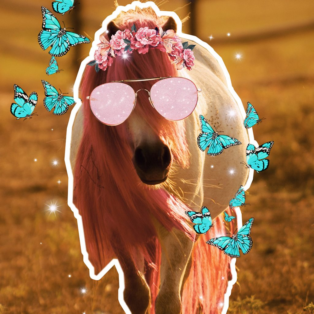 PicsArt Pony Penelope with stickers