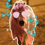 PicsArt Pony Penelope with stickers