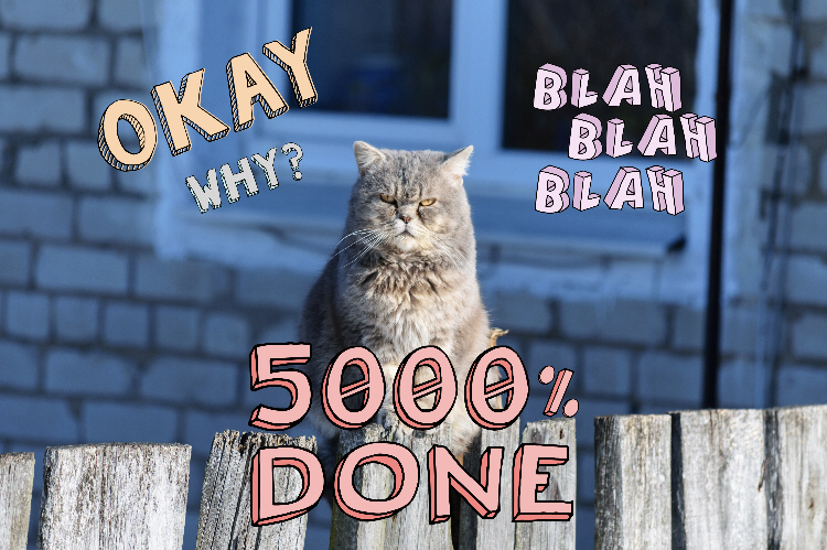 "Grumpy Cat edit with ""Whatever"" PicsArt Sticker Pack"
