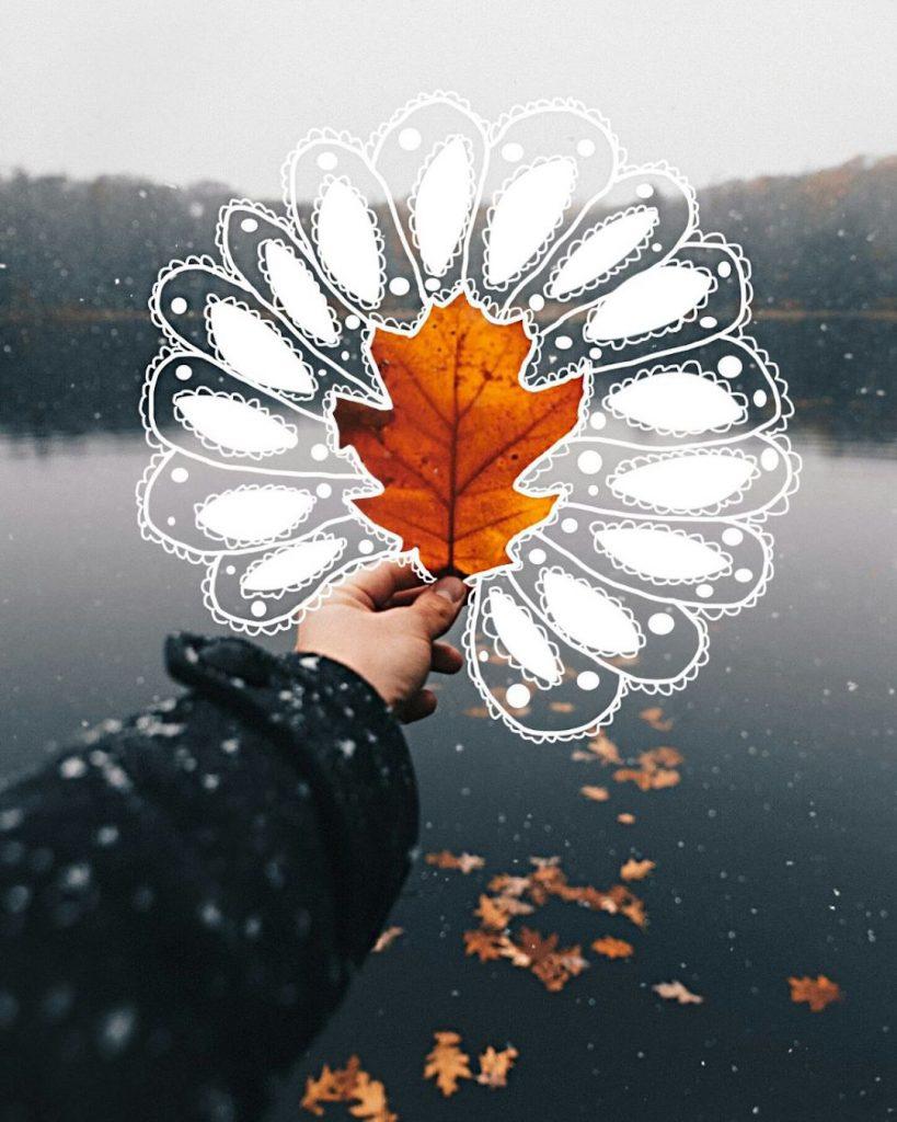 Brown fall leaf