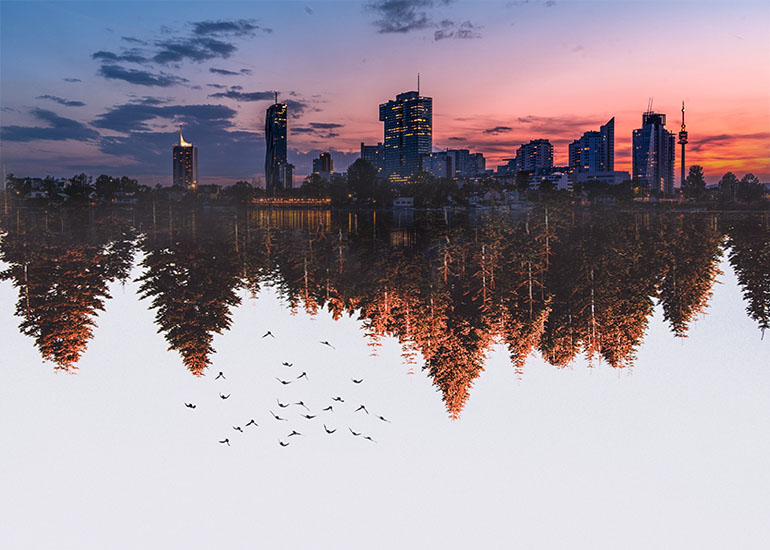 mirror image of a city with landscape under it edited with photo software