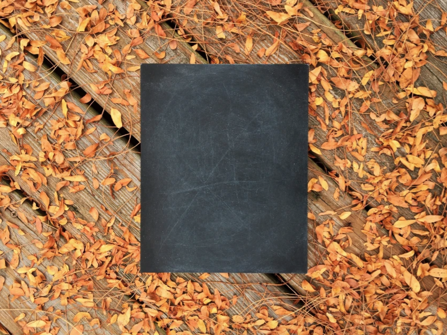Black chalkboard with leaves