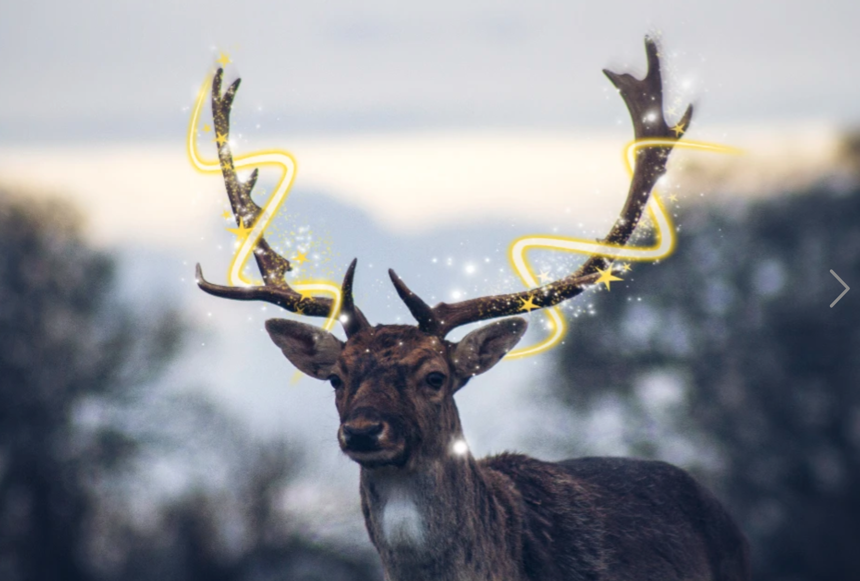 Reindeer with glitter