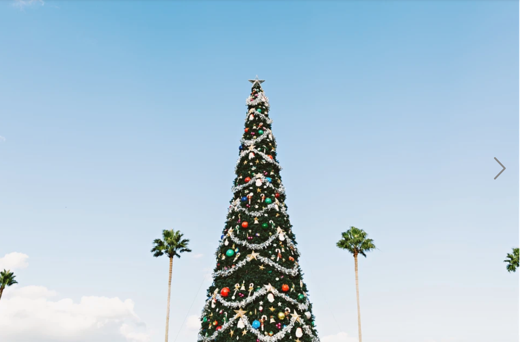 Christmas tree with palm trees