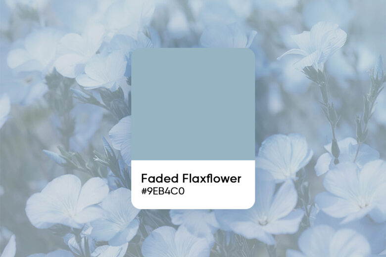 Faded flaxflower color code